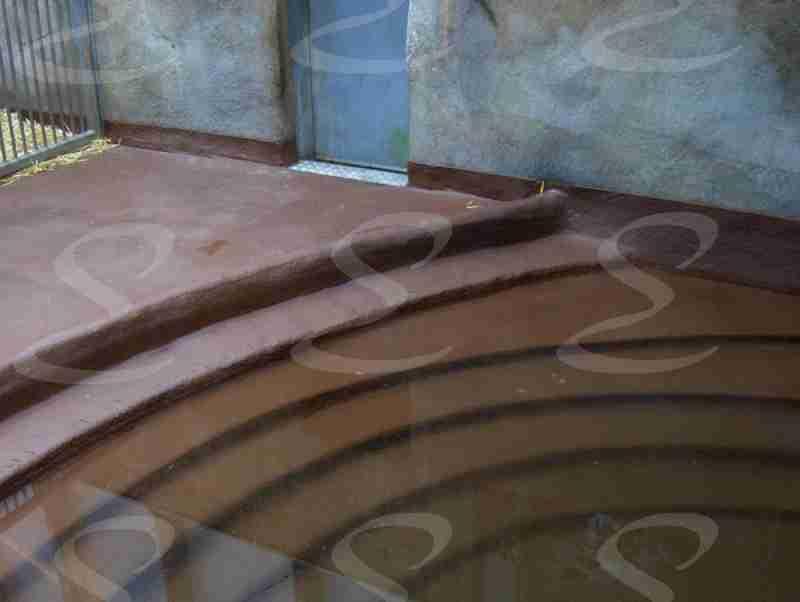 rivestimento poliurea pavimenti zoo elastopol