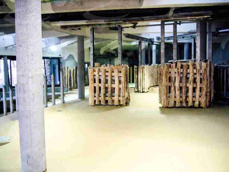 zoo vienna rivestimento pavimento poliurea