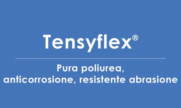 tensyflex poliurea anti abrasione